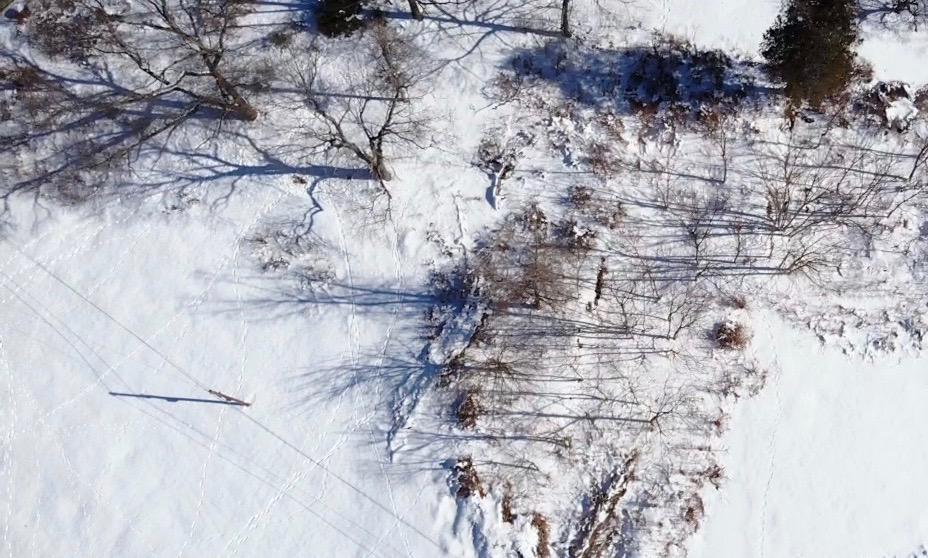 """David Austin & Justin Guinto's drone """"From Overhead"""""""